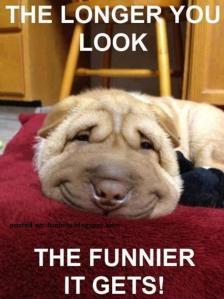 smilesfor me